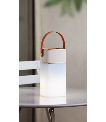 Speaker Wireless con luce a Led vari colori WDlifestyle